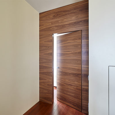 Двери в теле панелей